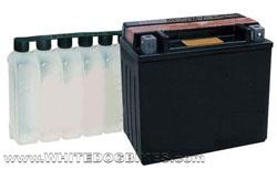 Maintenance free batteriesatteries