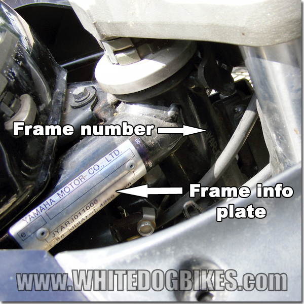 XJ600S Diversion frame number