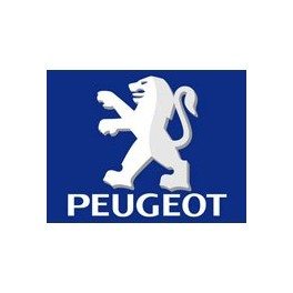 Peugeot Used Scooter Parts